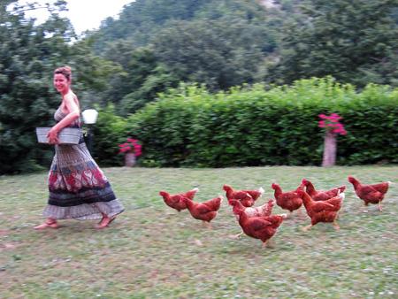 Farm Stay in Marche